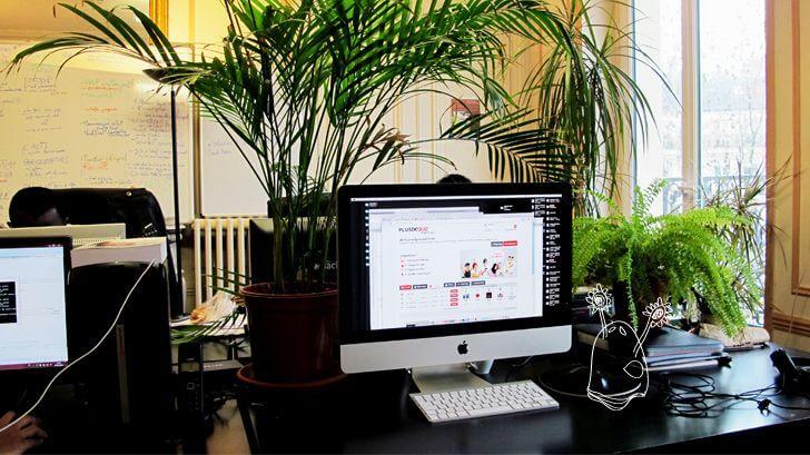 NokéWeb - Web Communication Agency in Paris, France